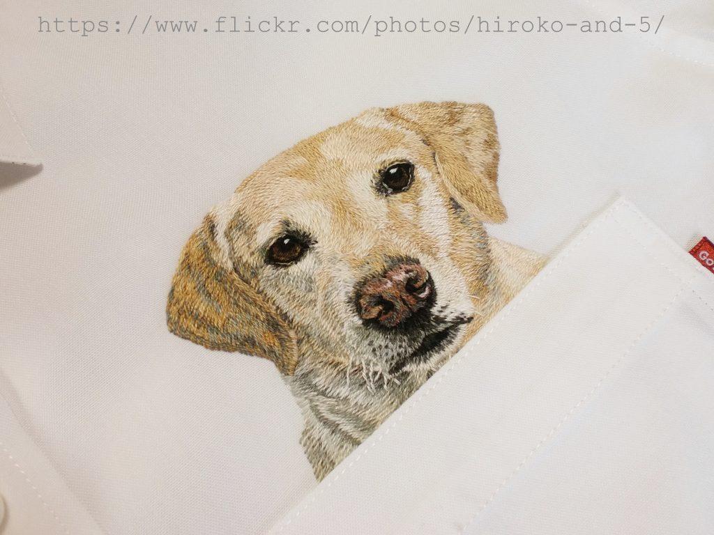 bordado cachorro